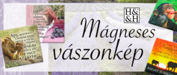BC_Magnes-vaszonkep